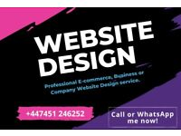 Freelance Web Design Service | eCommerce Website Designer| Shopify| Wordpress Website Design Service
