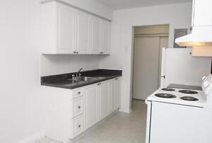 1 Bedroom for Rent near Homer Watson Blvd & Stirling Ave S! Kitchener / Waterloo Kitchener Area image 6
