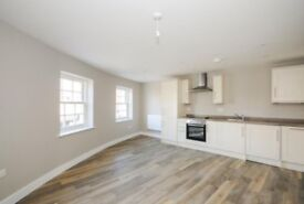NEW 1 Bedroom Flat to Rent - £900 pcm (excluding bills). Central Chelmsford next to station MUST SEE