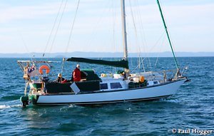 Hartley RORC 39 ON 854377 Glenwood Fraser Coast Preview