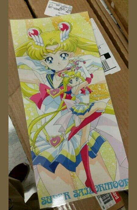 Sailor Moon posters lot misc color laminated