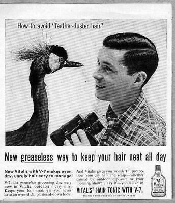 1955 Print Ad Vitalis Mens Hair Tonic Avoid Feather Duster Hair
