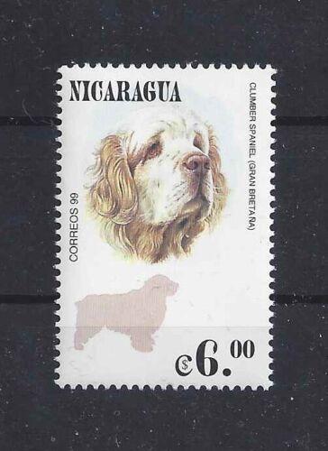 Dog Art Head Study Postage Stamp CLUMBER SPANIEL Nicaragua 1999 MNH