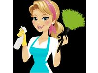 Experienced, Reliable and Hardworking Domestic Cleaner