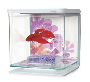 USED: fish tank with unopened food and cleaner