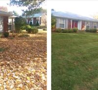 Fall Cleanup/ leaves raked and removed