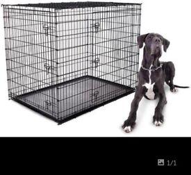 XL DOG CREATE