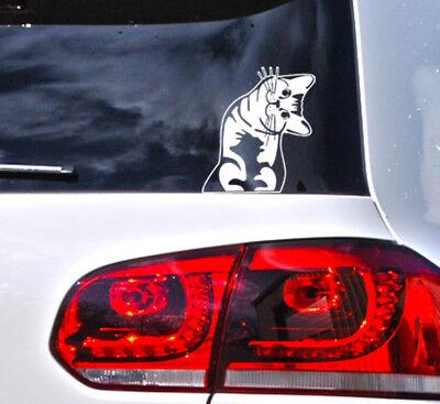 Katzen Aufkleber Katze Auto Sticker Cat Kitty Kittn Fun Tattoo