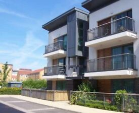 Large modern 1 bed city centre apartment - sunny balcony & parking - £745pcm NO FEES - avail end Sep