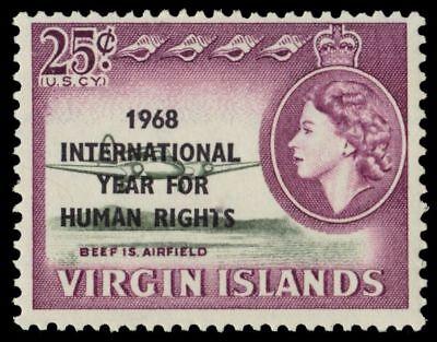 VIRGIN ISLANDS 191 (SG225) - International Year for Human Rights (pa64841)