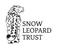 Cat-Themed Trivia for Snow Leopards