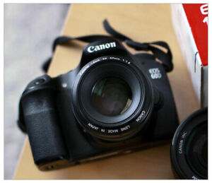 Canon 60D & 50D bodies and Canon EF-S 15-85mm USM
