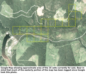 16 Placer Cells for Sale in Beaver Pass Cariboo Mining District