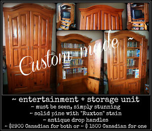 Entertainment + Storage Units Kitchener / Waterloo Kitchener Area image 1