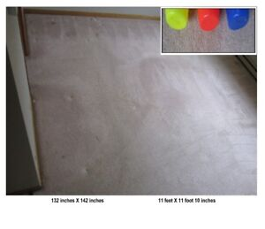 Carpet, wall to wall.