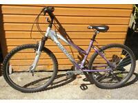 """Girls """"Giant"""" bike"""