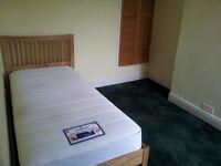 Single room to rent in Coteridge, Kings Norton, all bills included
