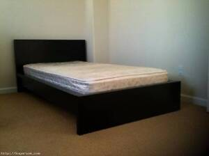 Private Bedroom ,5 mins walk to UNSW , 20 mins to Sydney CBD, Kingsford Eastern Suburbs Preview