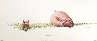 "WARWICK HIGGS ""Trotters"" pig piglet farmyard humour NEW SIZE:25cm x 59cm  RARE"