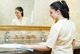 TheBEST Regular,Domestic Cleaner,End of Tenancy Cleaning,Cleaning Lady,Reliable Good,House,Cleaner