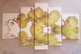 5 piece Orchid Canvas