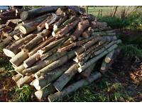 Fire wood limbs