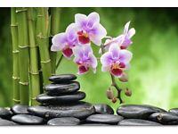 Thai Massage Service by Sue