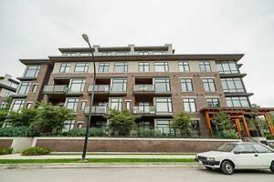 303 262 SALTER STREET New Westminster, British Columbia