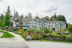 413 16388 64 AVENUE Surrey, British Columbia