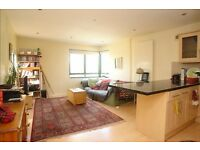 2-6 week short-term let, double room, Peckham Rye