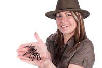 Fête d'enfants à domicile avec nos amis les insectes !!!