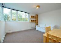Spacious two bedroom flat, bathroom just refurbished, 13 minutes walk to Stoke Newington station!