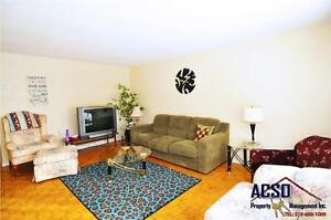 3 BDRMS (short term lease available) All female home near U of W Kitchener / Waterloo Kitchener Area image 6