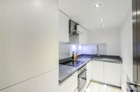 Beautiful, 2 bedroom flat with a private patio, High Spec finish must see! Finsbury Park