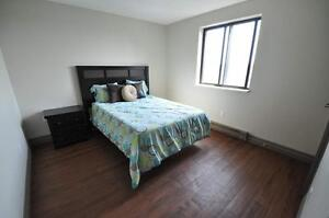 One Month Free on Spacious and Modern Suites! Kitchener / Waterloo Kitchener Area image 8