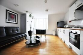 Large 1 double bedroom in E2