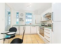 LOVELY MODERN ONE BED APARTMENT - SEPARATE FITTED KITCHEN - LIVING ROOM - WESTMINSTER/PIMLICO ZONE 1