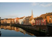 Hosts needed for international visitors in Norwich