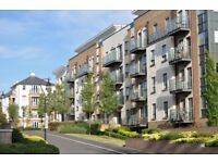 Beautiful 1 bedroom flat in the stunnig Queen Mary''s development SW15