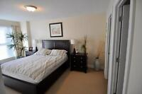 Upscale 2 Bdrm on Dal Campus