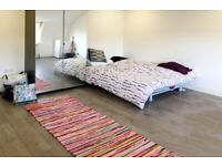 ~Council Tax & Utility Bills Included - Large Studio near Ealing Broadway~