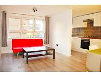 Wonderful newly renovated 1 bed flat in Mile-End E3