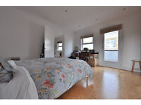 Large 1 Bed Penthouse on Curtain Road/Shoreditch