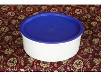 Tupperware container with seal