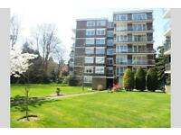 2 bedroom house in Branksome Park, BH13
