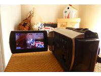 Used Sony Handycam DCR-SR37E 60GB Camcorder