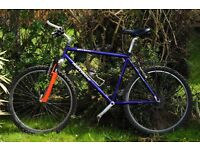 Great Mountain Bike Author with front damper, rack and bottle cage