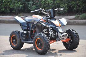 2017 New Quadbike Dirt Ninja 800 Watts - Kids Electric Quad Bike Atv - 2-Stroke - Free Delivery