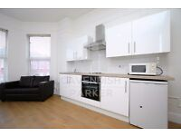 BRAND NEWLY RENOVATED STUDIO HOME- EXCELLENT LOCATION- MODERN FINISH- IDEAL FOR SINGLE/COUPLE