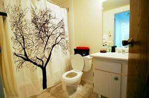 Perfect for seniors. Clean/Spacious 2 bedroom Avail Now.